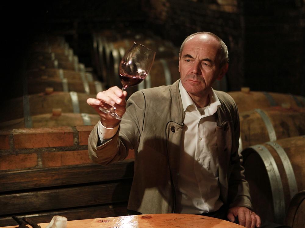 Weingut Fink - Der Weinkeller